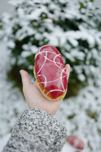 Fasching Close-up Cold Temperature Day Donat Food Food And Drink Freshness Holding Human Body Part Human Finger Human Hand Leisure Activity Nature One Person Outdoors Palm Personal Perspective Real People Red Snow Treat Unrecognizable Person Winter Women