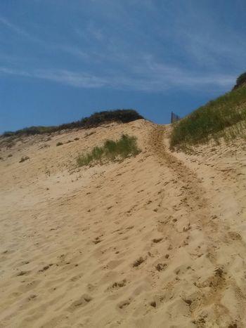 The Explorer - 2014 EyeEm Awards Sand Dunes Long Trail Sand & Sea