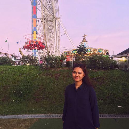 Theme Park Ferris Wheel Merrygoround