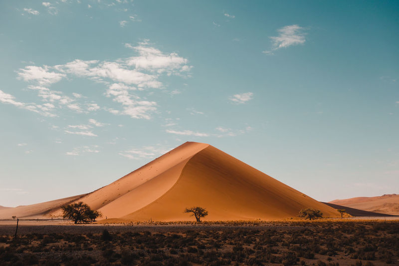 Great dune view, near the famous dune 45, in the Sossusvlei desert, Namibia. Desert Dune 45 Namibia Sossusvlei Africa Arid Climate Beauty In Nature Colorful Desert Dune Orange Color Outdoors Plant Sand Dune Tranquility Wild The Great Outdoors - 2018 EyeEm Awards