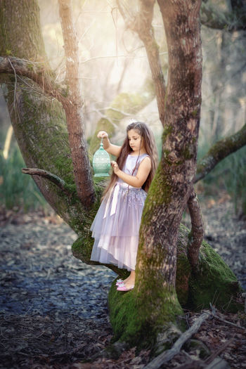 A little princess with long hair stands on a huge old tree, with a lamp. fairy tale story