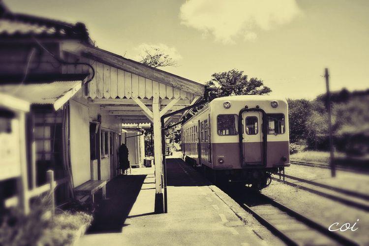 ノスタルジックな写真を撮りたくて、故郷近くの小湊鉄道に乗ってみました Japan 小湊鉄道 Summer ☀ My Favorite  Memories Traveling