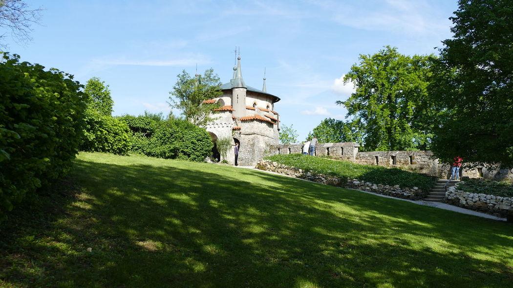 Architecture Baden-Württemberg  Castle Day Deutschland EyeEm Best Shots EyeEmNewHere GERMANY🇩🇪DEUTSCHERLAND@ Grass Nature Outdoors Schloss Lichtenstein Sky Tree