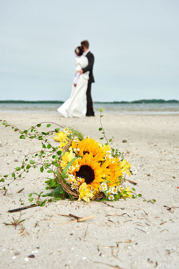 Beach Couple Flower Love Marry Sandy Sunflower Water Wedding
