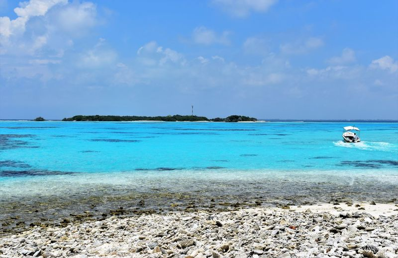 maldives Beach Beauty In Nature Blue Cloud - Sky Day Horizon Horizon Over Water Idyllic Land Nature No People Non-urban Scene Outdoors Sailboat Scenics - Nature Sea Sky Tranquil Scene Tranquility Travel Turquoise Colored Water