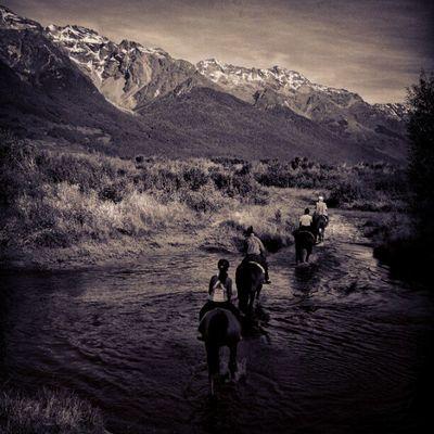 Sony Nex Nex5n Skopar 21mm bw blackandwhite monochrome bnw bnw_society newzealand landscape glenorchy horse horseriding