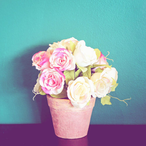 Flower Flowering Plant Plant Freshness Vulnerability  Fragility Beauty In Nature Rosé Indoors  Close-up Rose - Flower Vase Nature Flower Head Flower Arrangement Pink Color No People Petal Inflorescence Table Bouquet Blue Background Bunch Of Flowers Turquoise Colored Decoration Pastel