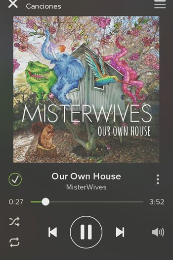 Misterwives Beautiful Love