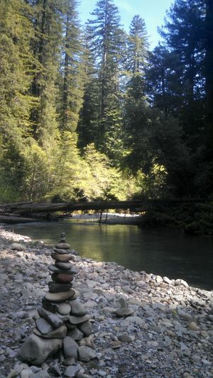 River Day Eyeem River Life Zenphotography Rock Sculpture Rock Stacking Redwoods Humboldt County California Eyeem California No People Eye4photography  EyeEm Nature Lover From My Point Of View Smartphonephotography Mobile Photography Lobuephotos Motorola Capture The Moment EyeEm Gallery EyeEm Best Shots My Year My View