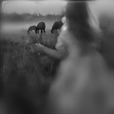 """""""If I'm honest I have to tell you I still read fairy-tales and I like them best of all."""" ― Audrey Hepburn Blackandwhite Fairy Tale Sweet Little Horses"""