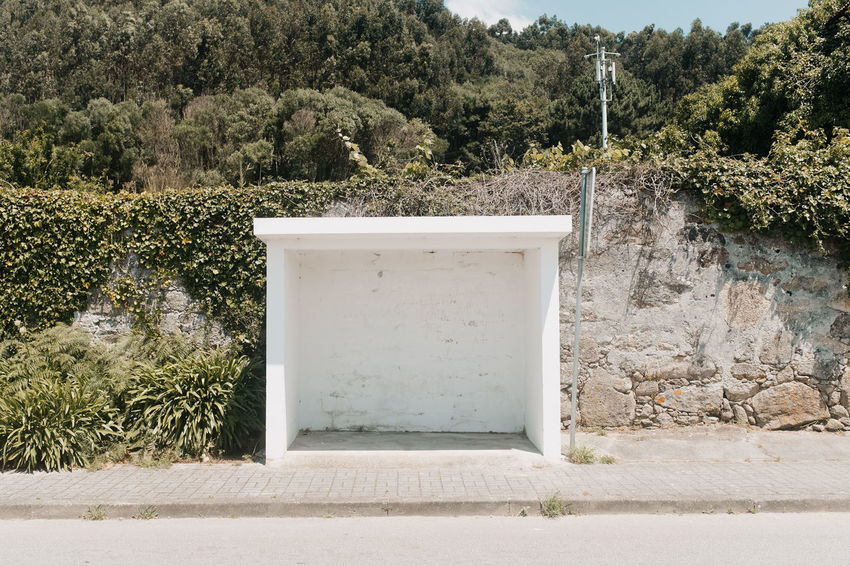 LOST IN GALICIA 🚌 Lostingalicia Threeweeksgalicia Plant Tree Nature Growth Day No People Outdoors Sunlight Wall - Building Feature Architecture Tranquility Beauty In Nature Wall Land Built Structure Green Color Non-urban Scene Tranquil Scene Solid Scenics - Nature