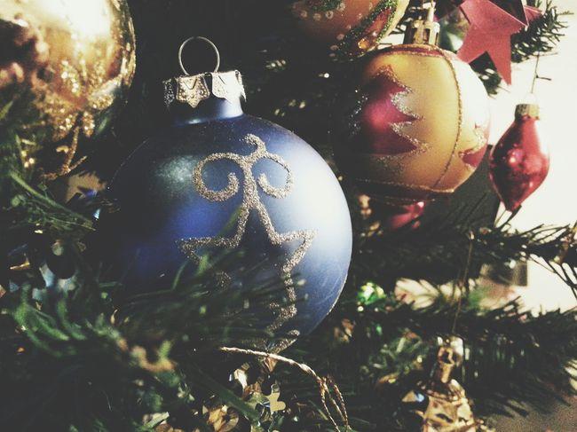 Christmas Tree Taking Photos Macro