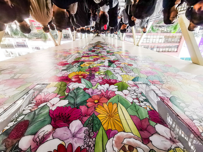 High angle view of people on multi colored flowering plants