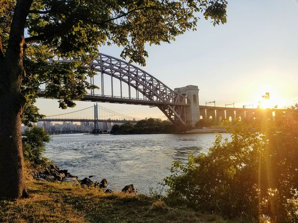 Bridge - Man Made Structure Sunset Tree City Built Structure Suspension Bridge Urban Skyline Cityscape Nature Sky River