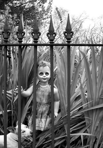 Black And White Day Dog Doll Gothic Human Representation Outdoors