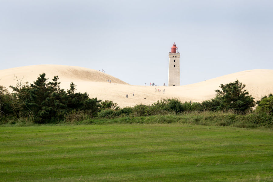 Ribjerg Knude lighthouse Dunes Lighthouse Architecture Beauty In Nature Building Exterior Built Structure Clear Sky Day Grass Growth Landscape Lighthouse Nature No People Outdoors Ribberg Knude Sand Sand Dune Scenics Sky Tranquil Scene Tranquility Tree Lost In The Landscape