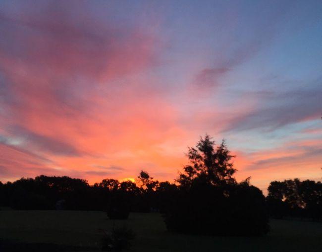 Sunrise Rural