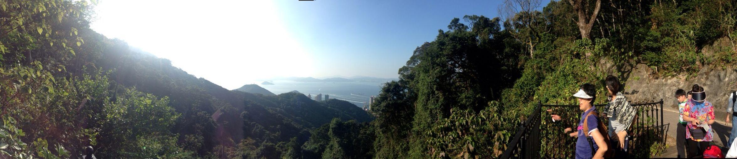 Hong Kong Mountain Goat Nature Walking