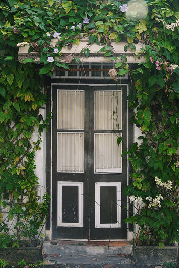 penang house~ Architecture Built Structure Closed Decor Door Entrance Home Home Is Where The Art Is House Penang Plant Residential Structure Travel