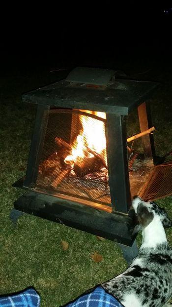 Backyard Fun Firepit Smores Not Impressed