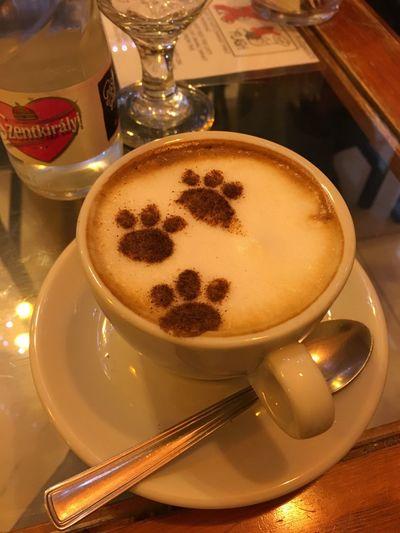 Cat Cafe Catpuccino