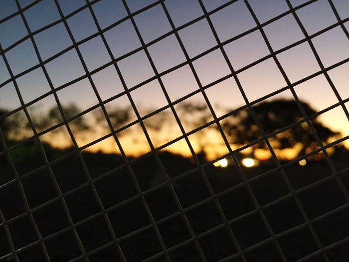 Nature on Grid
