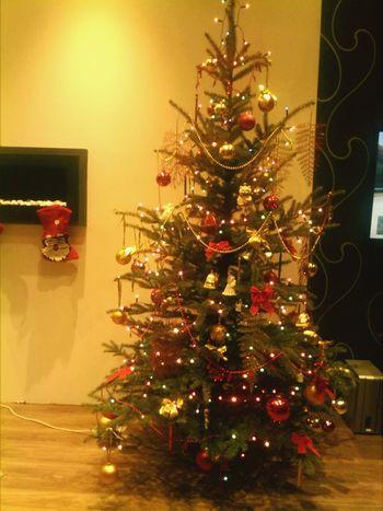 Christmas tree First Eyeem Photo