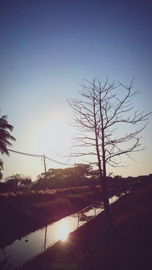 Sunlight Sun_collection, Sky_collection, Cloudporn, Skyporn At Alor Setar Malaysia