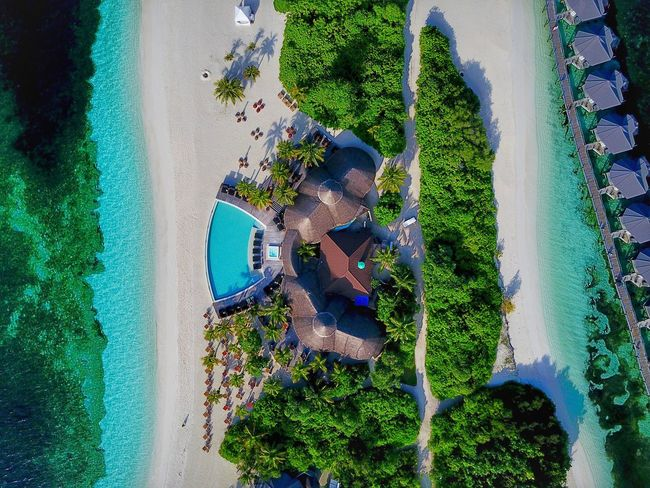 Maledives Malediven  Water Swimming Pool Relaxation Nature Travel Destinations Travel Photography Kuredu
