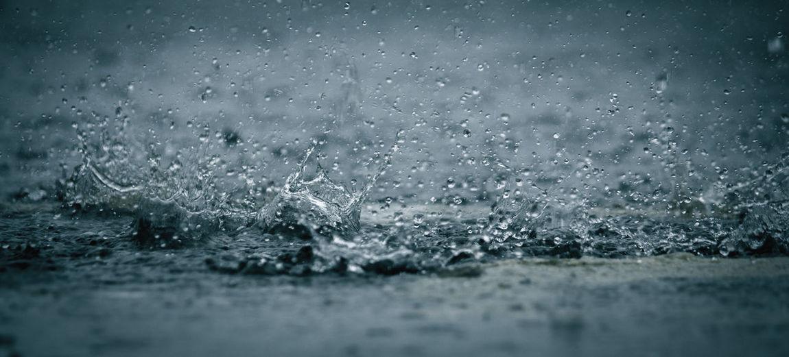 Rain Droop