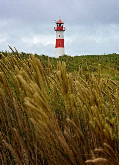 Lighthouse list-ost