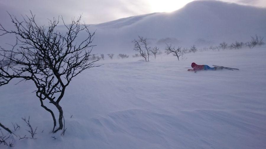 Snow Smoke Bare Mountain Birch Trees Sunny Day Windy Skiing Resting Winter Winter Wonderland Saltoluokta