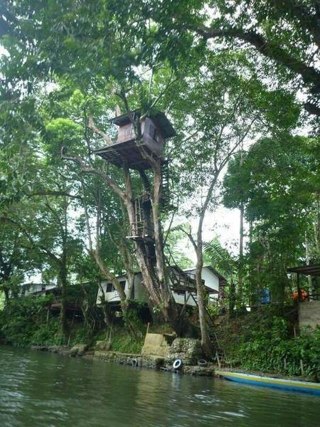 The Architect - 2015 EyeEm Awards Cubby House Brunei Darussalam Brunei Borneo Travel Photography Travelling Remote Life