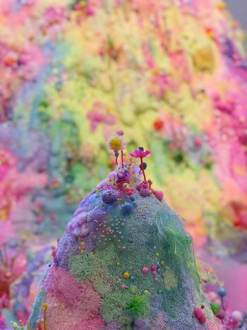 Sugar Mountain ArtWork Miniatures Sugar Focus On Foreground Close-up