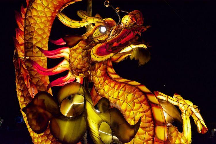 Beautiful Lighting Beautiful Lighting And Decoration Hoi An Vietnam Black Background Dragon Illuminated Dragon Night