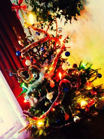 My favorite tree in whole year 🎄☃🎅🏼☃🎄 SoTrue💯💯💯💯💯💯💯💯💯