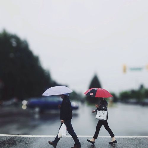 Side view of two people with umbrellas on the road
