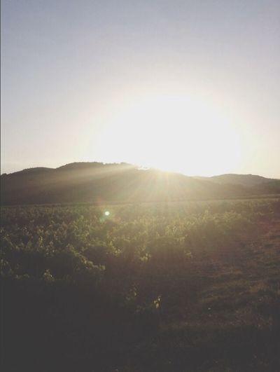 Provence France Enjoying The Sun Nature