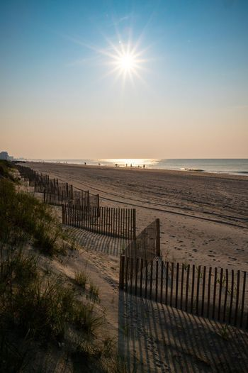 Dune fences on