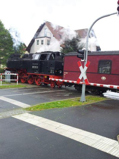 Kleine Dampfbahn Ostsee Germany