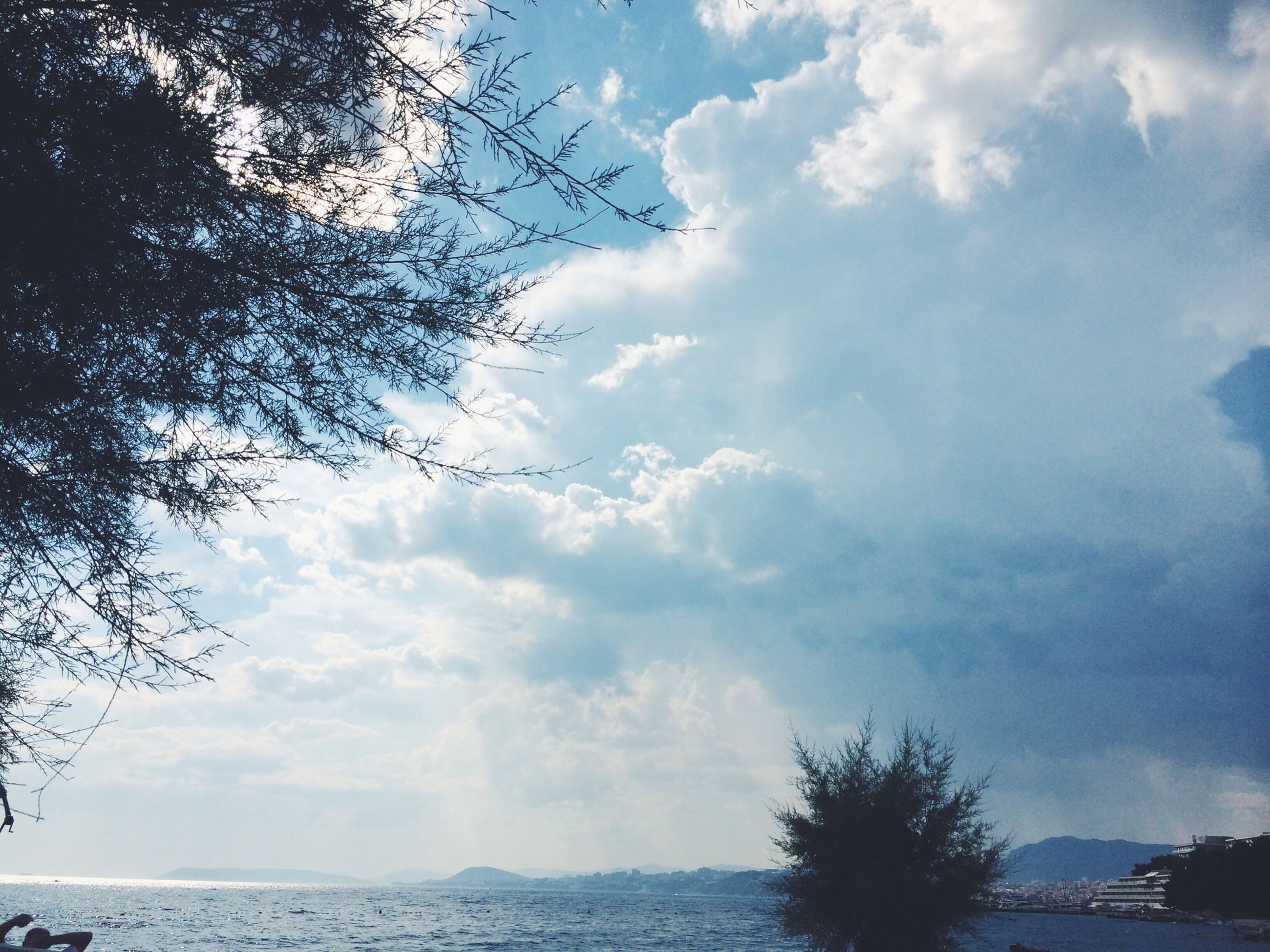 sky, cloud - sky, tree, tranquility, tranquil scene, scenics, cloudy, beauty in nature, water, nature, cloud, sea, weather, branch, idyllic, horizon over water, silhouette, outdoors, waterfront, no people