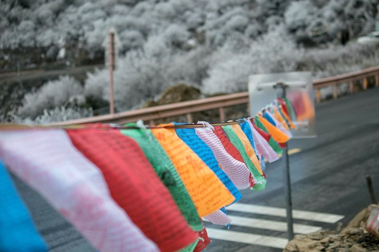 Close-up of multi colored clothespins on snow