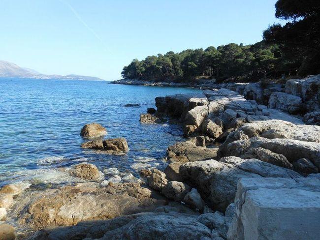 Lokrum Island, Dubrovnik Lokrum  LokrumIsland Dubrovnik, Croatia Dubrovnik Croatia