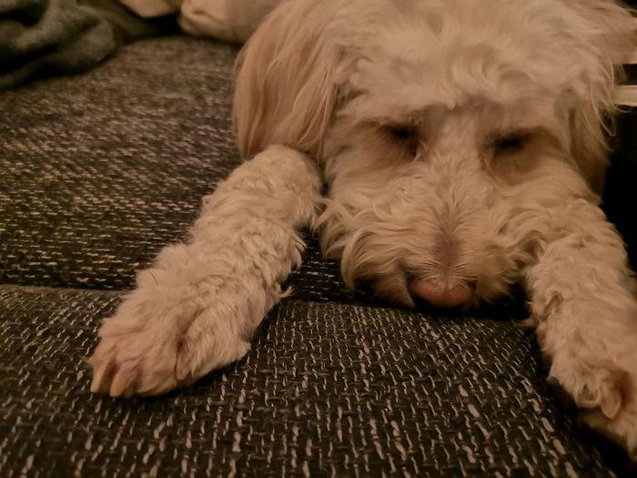 tired EyeEm
