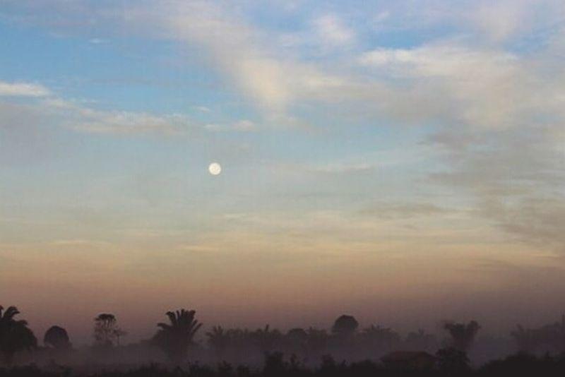 Amazon Amazonia Amazonas-Brasil Amazonas Amazon - Brazil Paisagem Sky Neblina Nebline Amanhecer