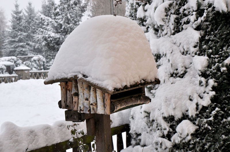 From a couple years ago Birdhouse Snowing Snow Cold Temperature Snowflake Winter Frozen Snowdrift Water Close-up Deep Snow Weather Condition