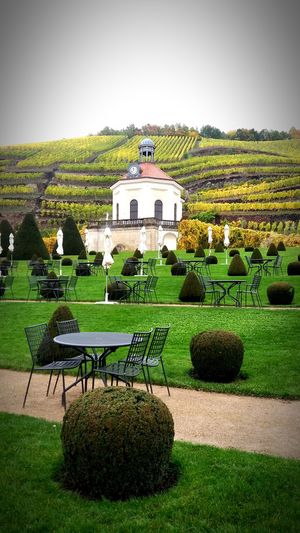 Fall No People Wackerbarth Vinery Wine Saxony Castle Vinyard Formed Terrace Chairs And Tables Rows Of Things Chapel Autumn Autumn Colors