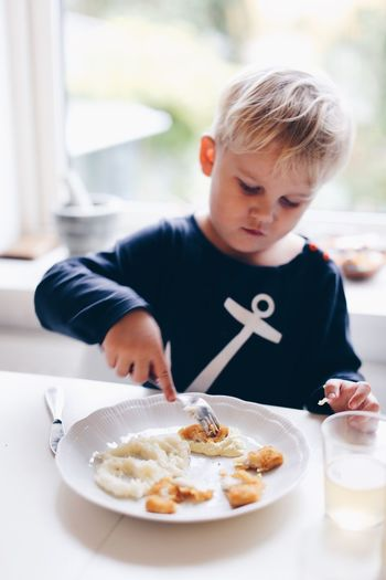 Plate Food And Drink Food Real People Indoors  Boys Table Childhood One Person Blond Hair Cake Home Interior Focus On Foreground Casual Clothing Fork Ready-to-eat Lifestyles Sweet Food Day Freshness Children Only Kid People Eating Full Frame Fresh On Market 2017