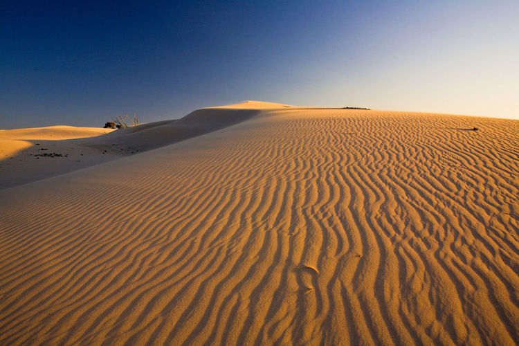 Sardinia, Italy Colors Composition Desert Dunes LINE Lines Arid Climate Atmospheric Backgrounds Beauty In Nature Clear Sky Climate Desert Deserto Environment Land Landscape Nature No People Non-urban Scene Outdoors Pattern Remote Sand Sand Dune Scenics - Nature Sky Tranquil Scene Tranquility Wave Pattern