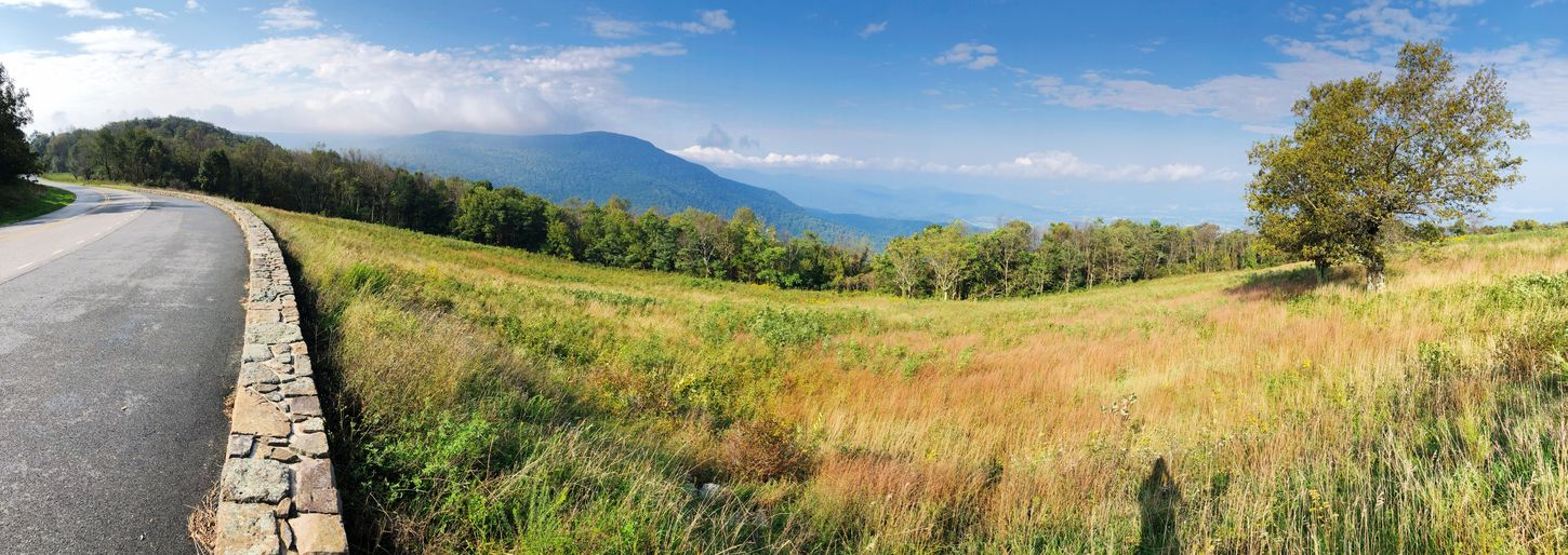Shenandoah National Park Overlook Plant Sky Cloud - Sky Tree Tranquil Scene Nature Beauty In Nature Tranquility Landscape No People Environment Outdoors Day